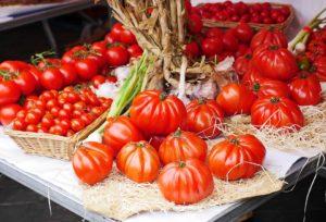 sostenibiliad en el cultivo de tomates Conesa