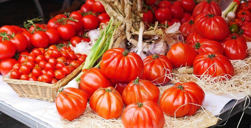 Conesa, Nestlé y Global Nature, comprometidos con la sostenibilidad en el cultivo del tomate
