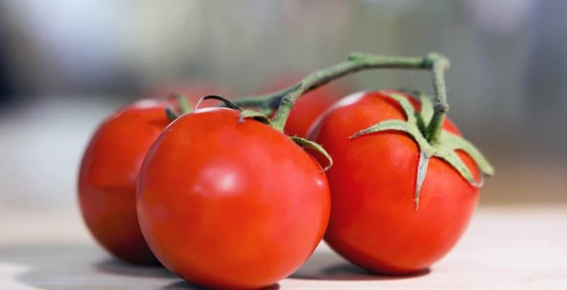 Conesa expande su dominio con la compra de Agraz y Agro Conserveros